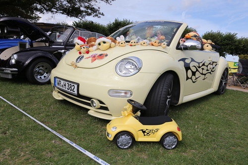 Beetle-Sunshinetour.