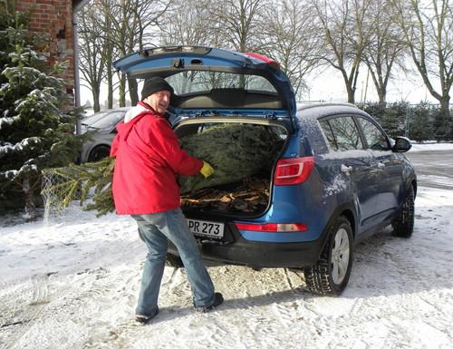 adac gibt tipps zum transport des weihnachtsbaums auto. Black Bedroom Furniture Sets. Home Design Ideas