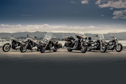 Harley-Davidson 110th Anniversary-Edition.
