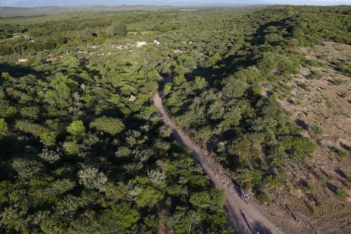 Abschnitt der sechsten Dakar-Etappe in Argentinien von Tucuman nach Salta.