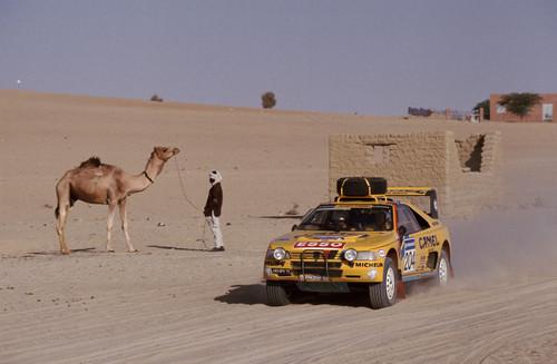 Peugeot 405 T 16 bei der Rallye Paris-Dakar.