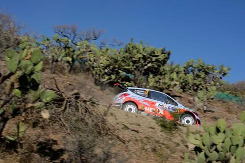 Rallye Mexiko 2014: Thierry Neuville im Hyundai i20 WRC.