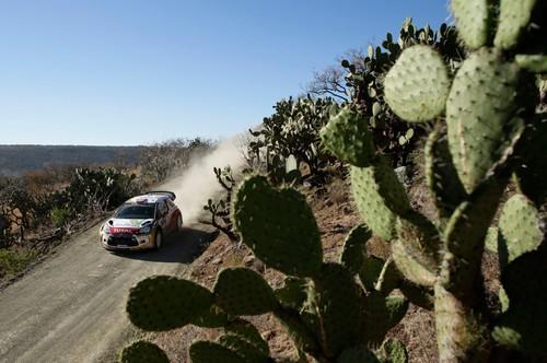 Rallye Mexiko 2014: Mads Ostberg im Citoren.