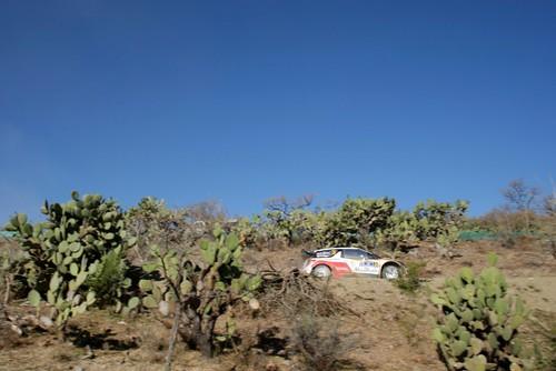 WRC Mexico.