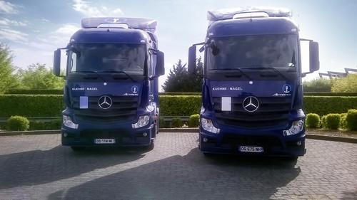 Kühne + Nagel hat bei Mercedes-Benz rund 240 Lkw für den Fern- und Verteilerverkehr bestellt.