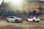 Volvo S60 Cross Country und V60 Cross Country rollen zum Händler