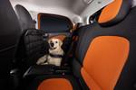 """Smart Forfour: """"Readyspace""""-Sitze eignen sich auch für Hunde"""