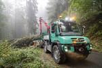 """Mercedes-Benz auf der """"Messe im Wald"""""""