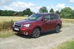 Fahrbericht Subaru Forester 2.0 D Sport CVT: Symmetrie als Prinzip
