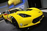 Detroit 2014: Die Corvette für die Rennpiste
