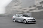 Skoda Octavia fürs Business